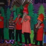Annual Day 2014 (20)