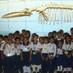 Maritime Museum 2014 (4)