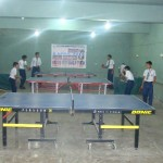 Table Tennis Day 2015 (11)